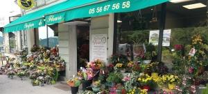 Parfum de fleurs - Fleuriste Beautiran
