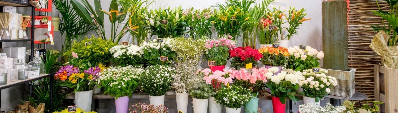 Boutiques Parfum de fleurs Beautiran et Podensac