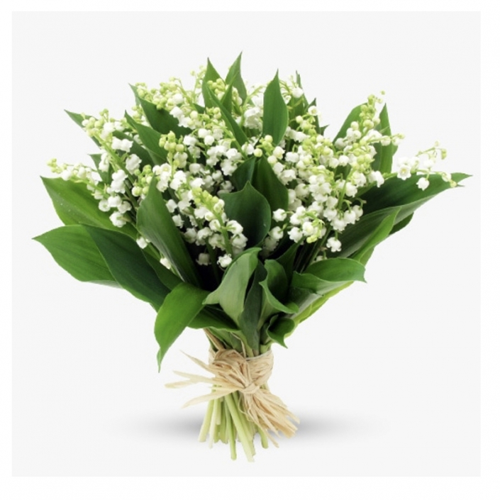 Bouquet de muguet - 40€