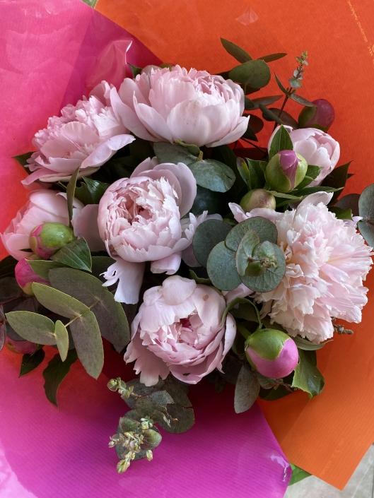 Bouquet de 11 Pivoines multicolores - 50€