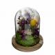 Cloche en verre et fleurs séchées