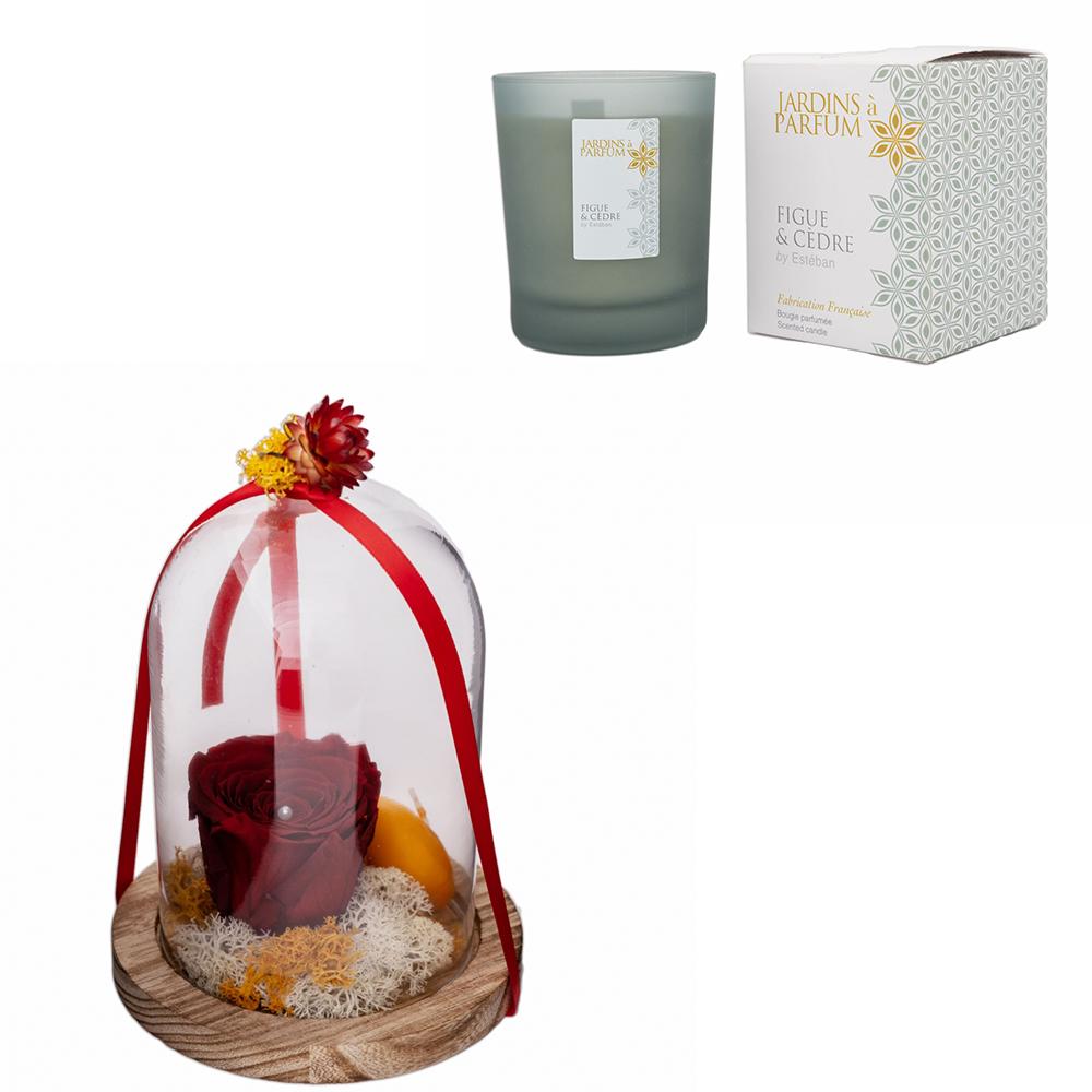 Offre duo : Cloche en fleurs séchée et rose éternelle + Bougie parfumée